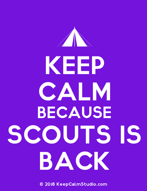 The start of September means that all our sections are restarting after a summer break. The terms' programmes are in the planning as we speak! Beavers, Cubs and Scouts all have spaces for new starters, just send us a message or email to say you are interested. We would also welcome more volunteers to help with any of our sections as well as help with admin / support roles :).